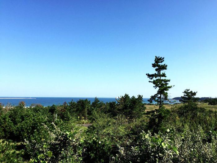 海!! この前の休みに海に行きました。 I went to sea a few days ago. Sea View Sea Seaside Seascape