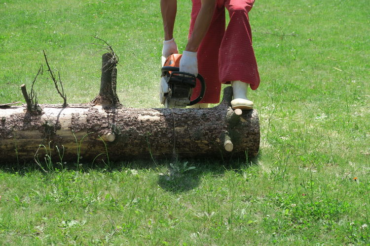 Low section of man cutting log on lawn