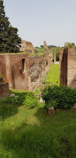Caracalla Ancient Civilization Ancient Old Ruin History Agriculture Architecture Built Structure Archaeology Ancient Rome Ancient History