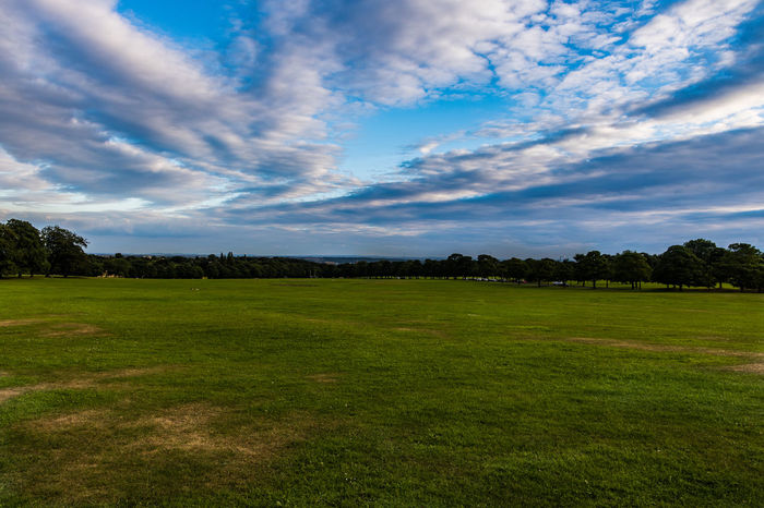 Leeds Roundhay Beauty In Nature Cloud - Sky Day Field Golf Golf Course Grass Green Color Landscape Nature No People Outdoors Roundhay Park Roundhaypark Scenics Sky Tranquil Scene Tranquility Tree