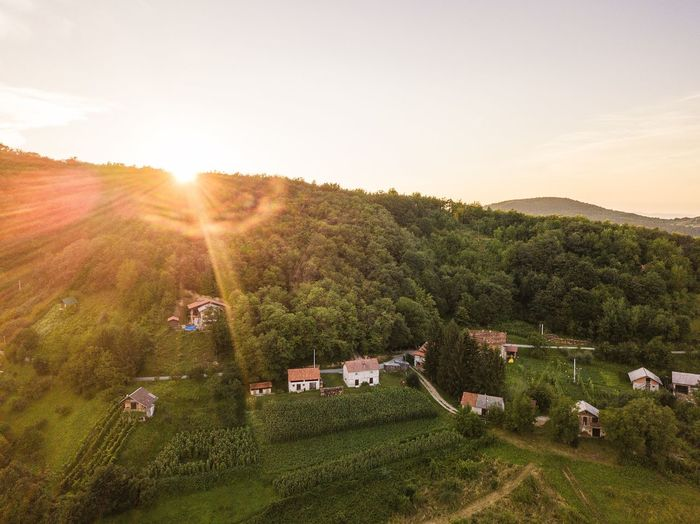 aerial landscape Drone  Landscape Landscape_Collection Sunset Sunsetlovers Sunsetcollection Mountain Samoborskogorje Djimavicprophotography Djiglobal Dji Djimavicpro Djiphotography Sky Flyinghigh Mavicpro Naturephotography Nature_perfection Croatia Nature_collection Tranquility Sunset_collection EyeEm Best Shots Eyemphotography Colors Sunny Day EyeEm Selects Tree Tea Crop Rural Scene Sunset Agriculture Sun Hill Sunlight Field Vineyard Terraced Field