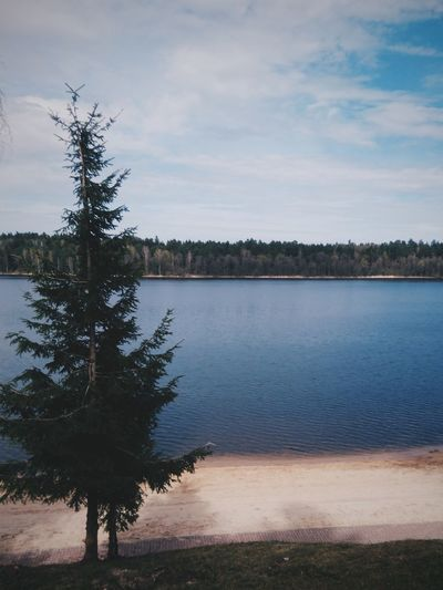 Gołdap, Poland. Tree Lake Water Landscape Sky Cloud - Sky No People Beauty In Nature Nature EyeEm Best Shots VSCO EyeEm Best Edits