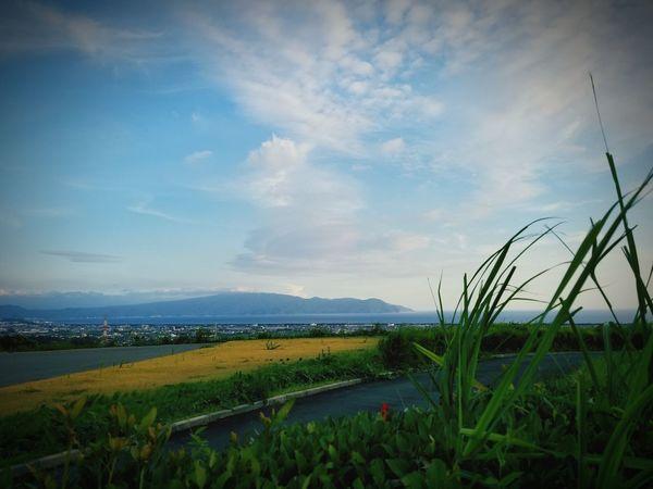 駿河湾沼津 Sea Water Rural Scene Lake Agriculture Sky Grass Landscape Cloud - Sky