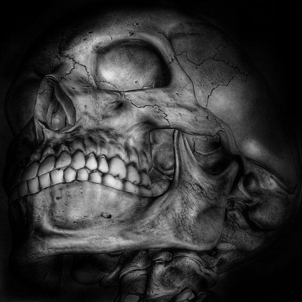 Skull Skull Skulls Skulls♥ Skullporn