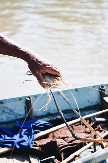 Shrimps River Water Nature Day Animal Vertebrate Animal Themes One Animal Rope Sunlight Fish Close-up Outdoors Animals In The Wild Fishing Fishing Industry
