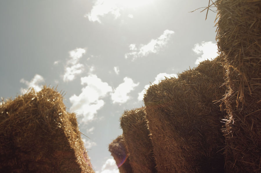 Bale  Pile Of Straw Piled Up Clouds Clouds And Sky Stacked Day Outdoors Countryside Daylight Straw Stacked Up Thatch Farm Life Sky Stack Farm 43 Golden Moments