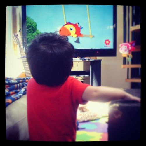 Stops everything to watch his favorite show. Vocabularry Babyfirsttv Inawe