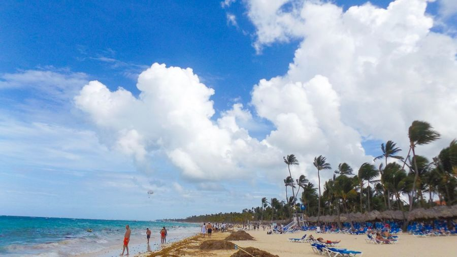 Sky Water Beach Cloud - Sky Sea Land Crowd Trip Real People Tree Large Group Of People Scenics - Nature Plant Holiday Vacations Nature Sand Beauty In Nature Horizon Over Water Group Of People