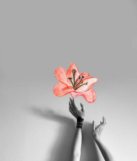 My photo + my little painting Getting Creative Painting Self Portrait Flower Monochrome Hands Mehendi Mehndi