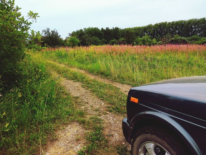 Journey. Car 4x4. Road. Summer Beauty In Nature Landscape Sunny Drive Trip Photo Morning Summertime Journey Walk Offroad Adventure Forest Countryside Car 4x4 Trip Summer A New Beginning It's About The Journey My Best Photo
