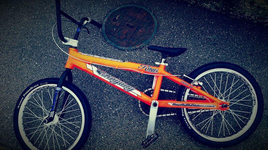 royalty new bike