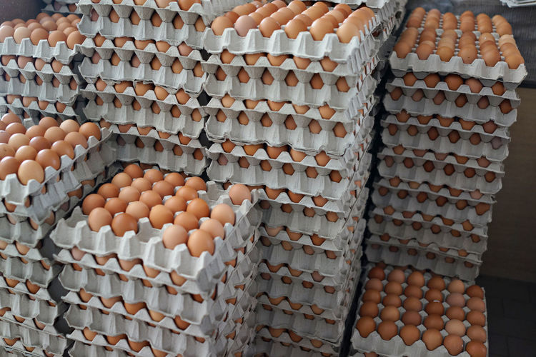 Fresh eggs from farm in egg tray Breakfast Chicken Cooking Diet Easter Farm Market Natural Poultry Raw Tray Abundance Brown Egg Egg Carton Eggs Eggshell Food Food And Drink Freshness Healthy Eating Large Group Of Objects Nutrition Package