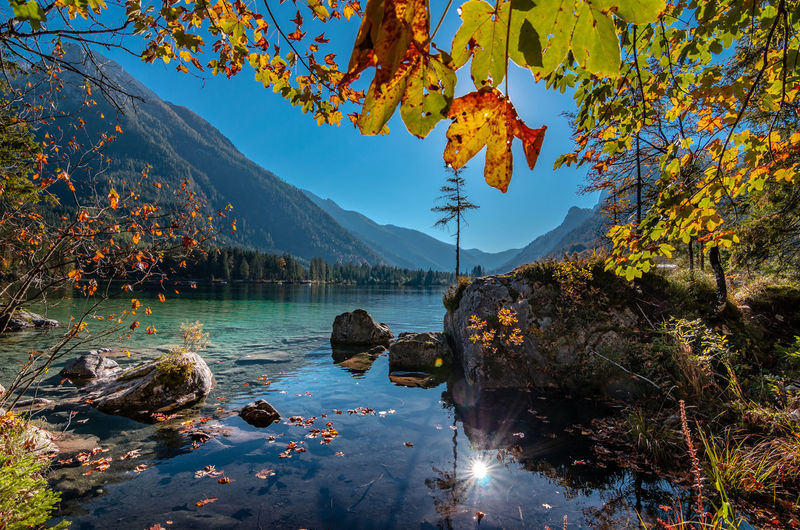 Scenic view of lake by autumn trees against sky