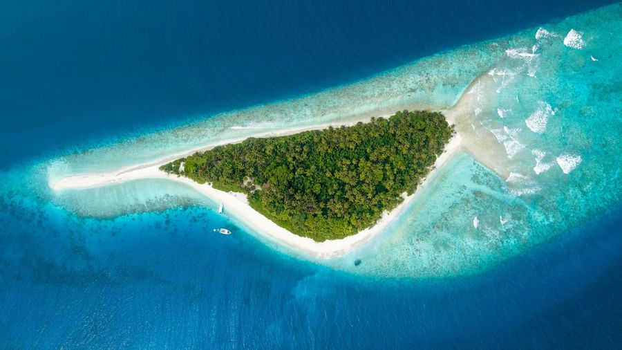 Fish Island Maldives Water Sea Beauty In Nature Scenics - Nature Nature Land Aerial View Blue No People High Angle View Idyllic Turquoise Colored Beach Island Tranquil Scene Day My Best Travel Photo