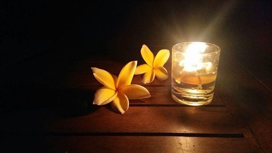 light change Candle Candlelight Candle Night Candleart Flower Flower Head Flowers Flower Collection EyeEm EyeEm Best Shots EyeEmNewHere EyeEmBestPics Eyeemphotography EyeEm Indonesia Flower Flower Head Table Orchid Petal Close-up
