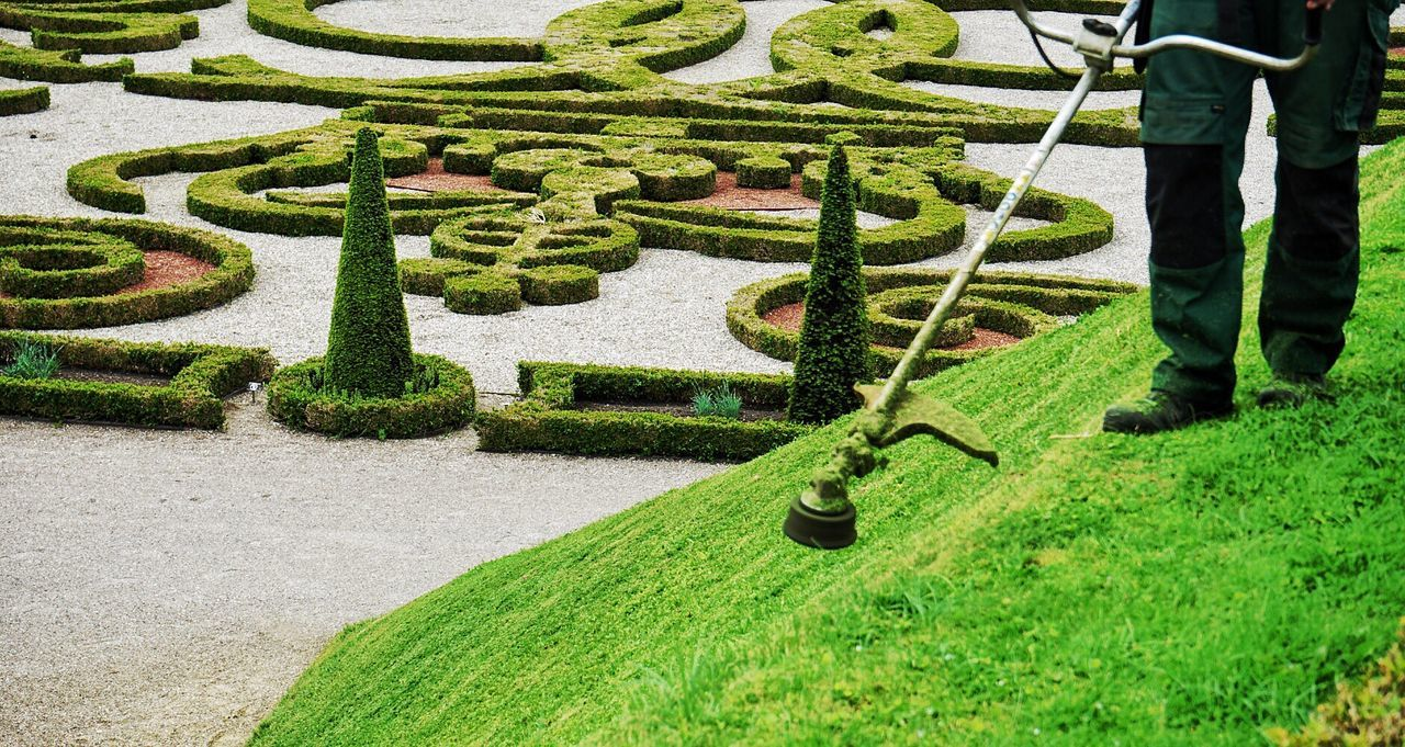 green color, grass, topiary, nature, day, outdoors, plant, growth, real people, low section, one person, people