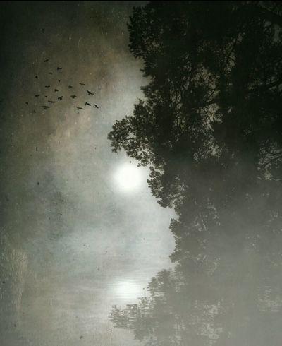 Dream... Autumn Dream Edit Photo Landscape ArtWork EyeEm Gallery Evening Magic_photography Magic_shots