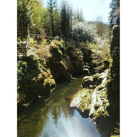 The real westeros Enjoying The Sun Northern Ireland Westeros  Tollymore Forest Park