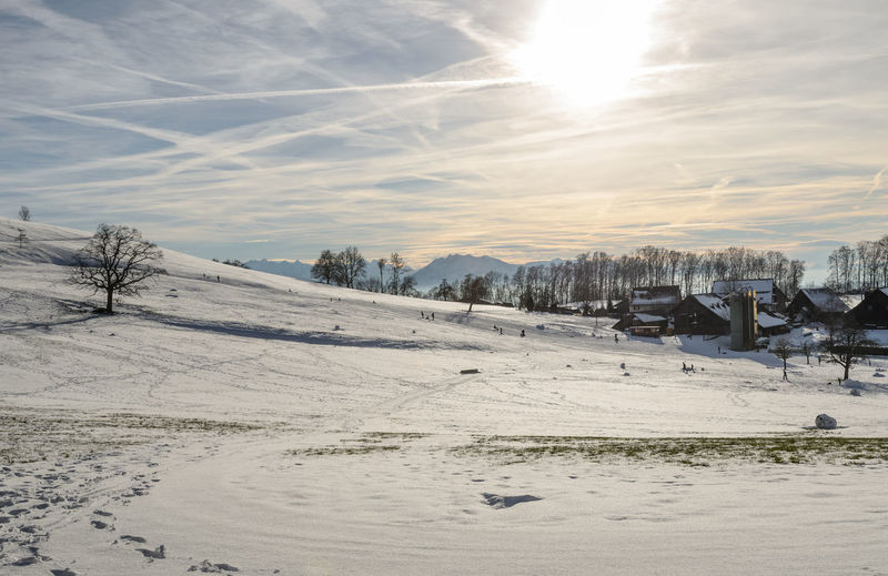Albis Sky Winter Snow Switzerland Albis Sledding Sledging Travel Tranquil Scene Sunlight Nature Cold Temperature Environment Scenics - Nature Cloud - Sky Sun Landscape Land Day Beauty In Nature Tranquility Field Snowcapped Mountain