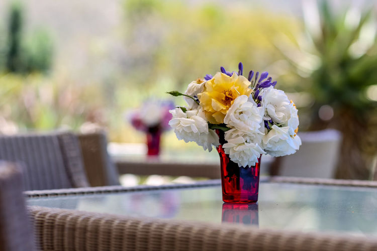 Flowers on table   high res image available Flower Arrangement Flowers On Table Outdoor Tables Petals Picked Flowers Restaurant Tables Summer Flowers Table Flowers Table Setting