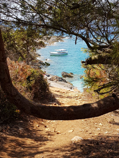 Croatia Beach Beauty In Nature Blue Water Boat Clear Sea Water Clear Water Day Forest High Angle View Nature Nautical Vessel No People Outdoors Path To The Beach Proizd Seascape Sky Sunlight Tranquility Transportation Travel Destinations Tree Water
