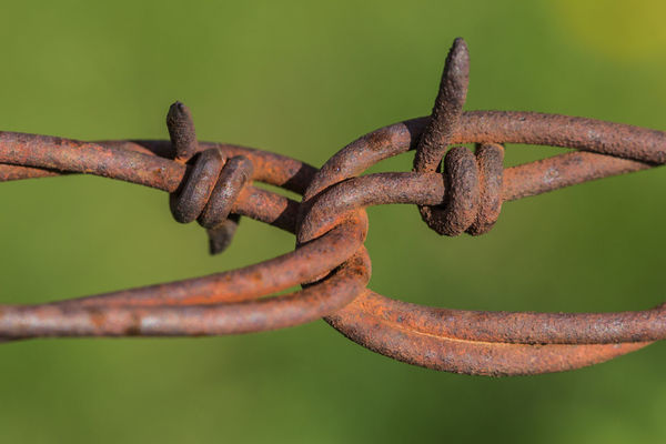 Barbed wire Barbed Wire Canon60d Canonphotography Close-up Detail Farm Fence Focus On Foreground Loop Point Ranch Rusted Rusty Selective Focus Twisted Wire