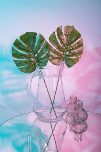 Close-up of leaves in glass vase on table