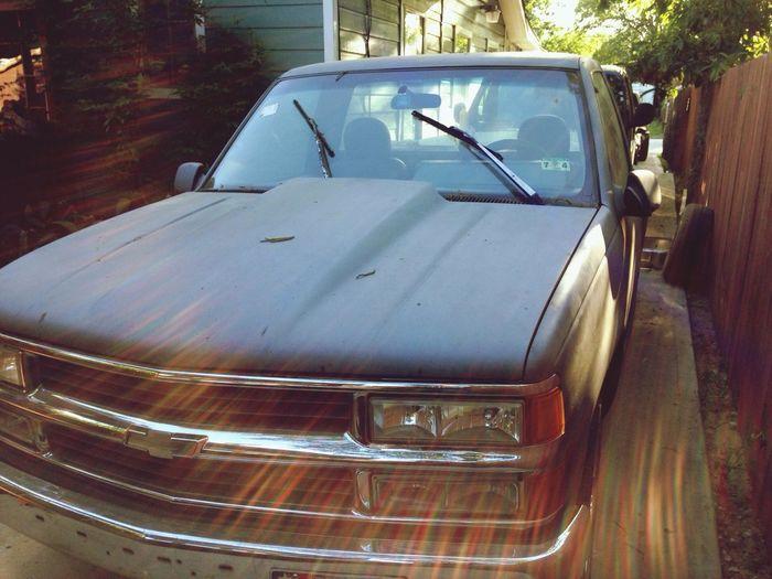 Zoe <3 Chevy.