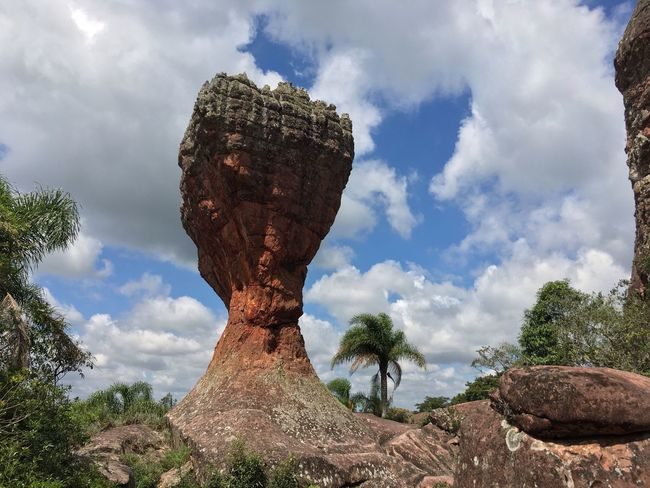 Cloud - Sky Sky Tree Low Angle View Day Tranquility Nature Tranquil Scene Rock - Object Outdoors Beauty In Nature Scenics No People Landscape Physical Geography