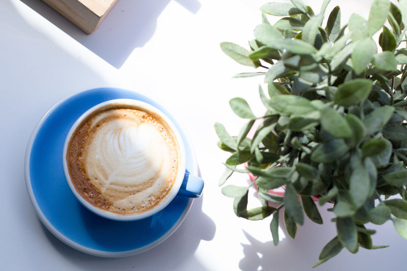 breakfasts are the best Cappuccino Close-up Coffee - Drink Coffee Cup Day Drink Flower Food Food And Drink Freshness Froth Art Frothy Drink Healthy Eating High Angle View Indoors  Latte Leaf No People Refreshment Saucer Table