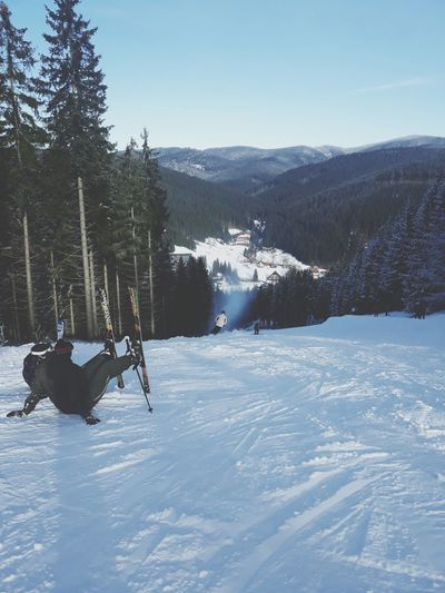 Czech Republic Czech Mountains Beskydy Ski Skiing Relaxing Sport Snow Winter Cold Temperature Tree Winter Sport Ski Holiday Nature Mountain Vacations Outdoors People