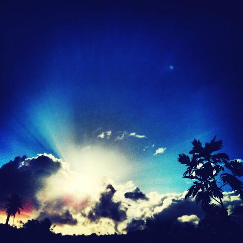 Skyporn Martinique Sky Shades