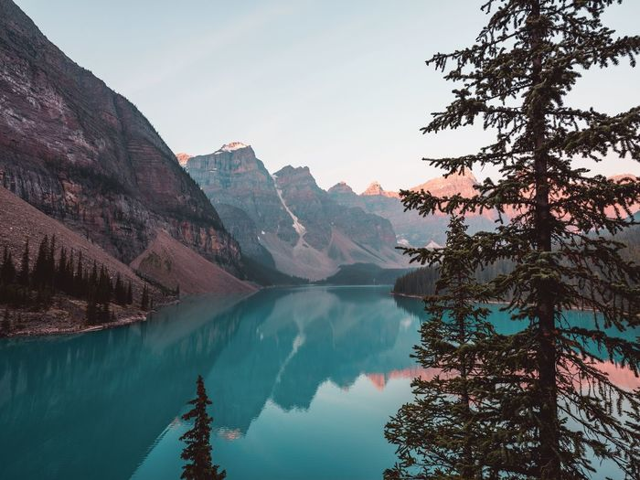 Moraine Lake, Alberta Water Mountain Beauty In Nature Scenics - Nature Tree Sky Tranquil Scene Reflection Lake Tranquility Mountain Range Nature Plant Non-urban Scene No People Idyllic Day Environment Remote Outdoors Formation Banff National Park  Banff  Moraine Lake  Canada