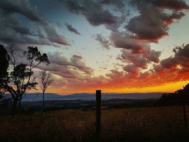Mountain sunrise Nature Tranquility Beauty In Nature Sky Cloud - Sky No People Silhouette Outdoors Vacations Trees And Sky Victoria Australia Seevictoria Clouds_of_our_world Sunrise Colour Visitmelbourne Mountdandenong Melbourne Skyline Bright Morning Visitvictoria Amazing Nature
