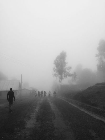 Country road in foggy weather