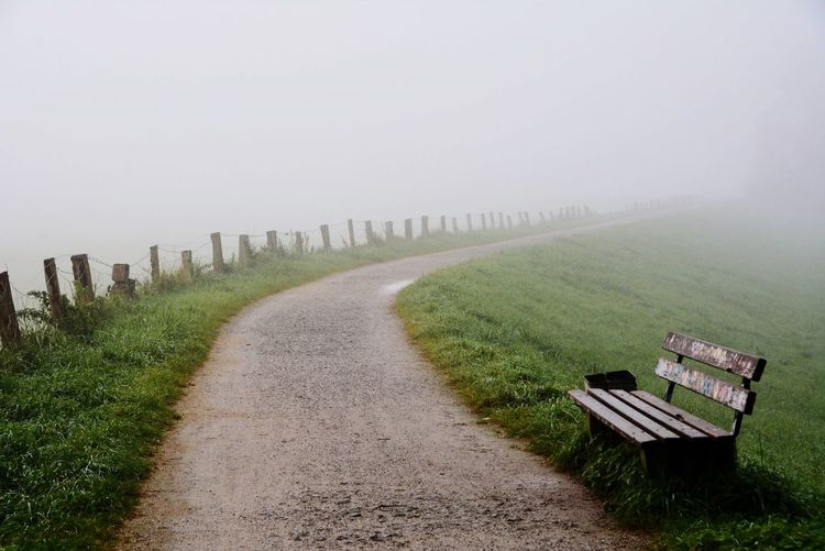 Pathway By Bench On Grassy Field During Foggy Weather