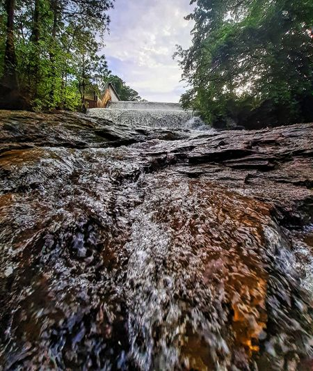 Surface level of water flowing through rocks in forest