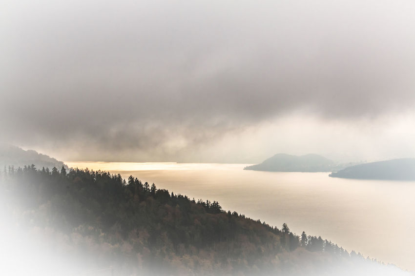 Thunersee im Nebel Clouds E-card Forest Horizon Over Water Lake View Lichtblicke Majestic Nebelmeer Ray Of Hope Thunersee Tranquil Scene Weather Wolken