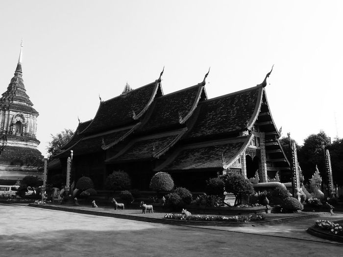 By day Architecture and animals representations Thailand ArchitectureAnimal Alignment Animal Representations Thailand Animal Statues Architecture Asian  Dragons Black And White Built Structure Clear Sky Outdoors Roofs Of Thailand Structure And Architecture Thailand Architecture Full Lenght Black And White Photography In Thailand