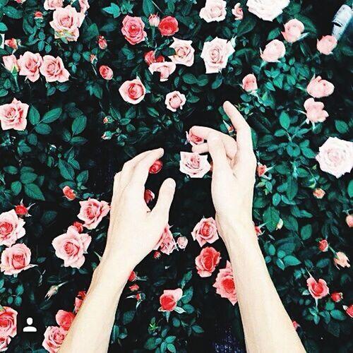 😍😍 Flowers #цветы #photo #фото