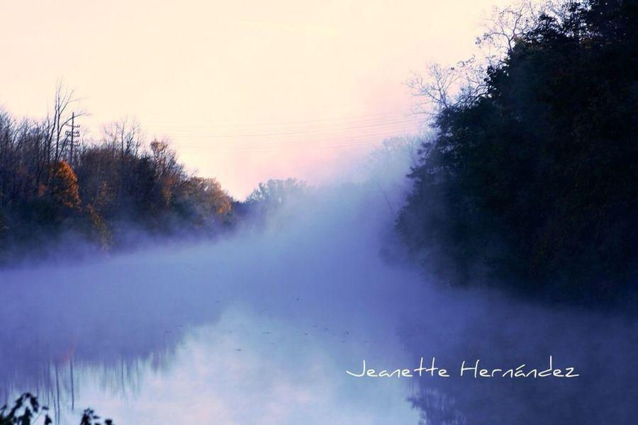 7am fog on the canal Fog Canal Streamzoofamily StreamzooPics