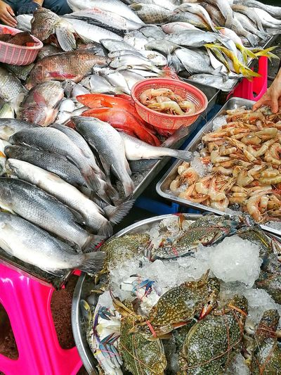 Fresh Seafood in the market. Seafoods Seashells Sea Fish Fresh Seafood Seafood Makret Seafoodmarket Fish Market Food Food Photography Foodlovers
