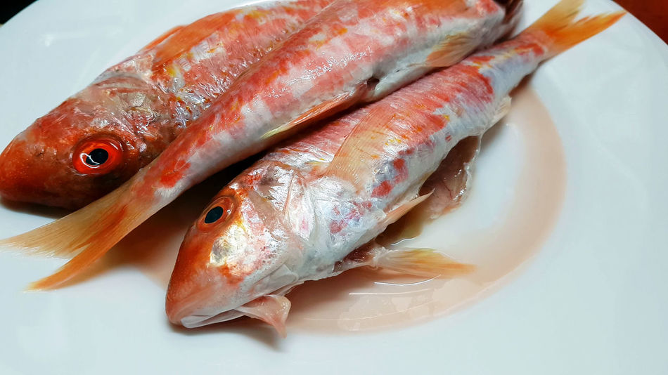 Red fresh mullets on a white plate. Raw striped red mullet fish (surmullet). Animal Themes Close-up Cooking Cool Dead Animal Fish Fishing Food Food And Drink Freshness Healthy Eating High Angle View Indoors  Meal Mediterranean Food Mullet No People Plate Preparation  Raw Food Red_mullet Seafood Still Life