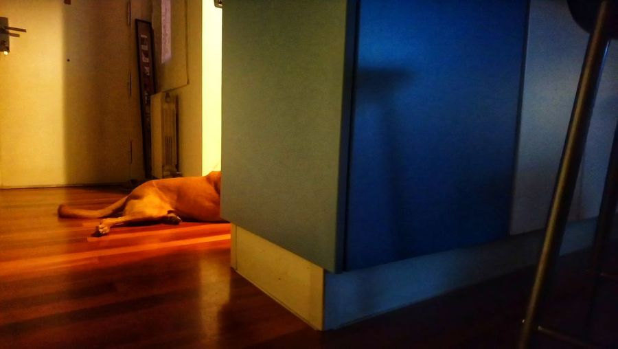 Man sleeping on floor at home