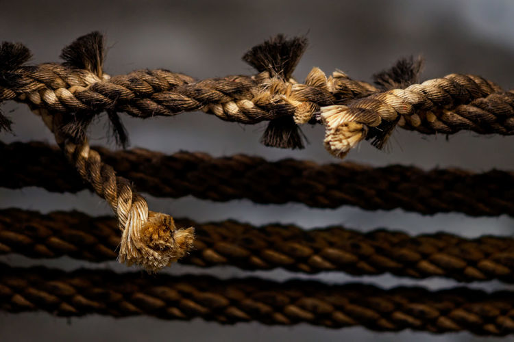 Close-up of old broken rope