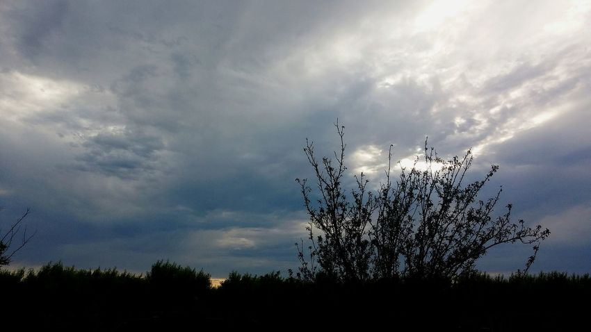 Clouds And Sky Good Morning Check This Out Taking Photos Sunrise Norcal Sunrise