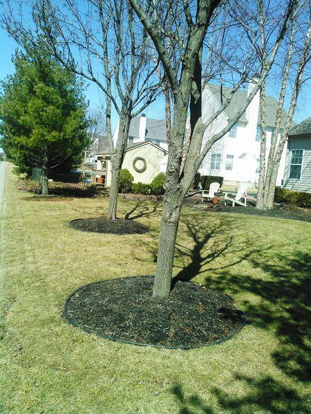 Circles Urban Geometry Suburbia Bucks County  My Daily Commute Shadow