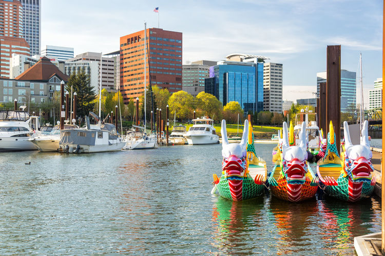 PORTLAND, OR - APRIL 8: Dragon boats and downtown Portland, OR on April 8, 2016 Architecture Bridge Bridge - Man Made Structure Built Structure City Cityscape Day Downtown Dragon Boat Oregon Outdoors Pacific Northwest  Portland River Sky Skyscraper Tourism Travel Travel Destinations Urban USA Water Waterfront Willamette Willamette River
