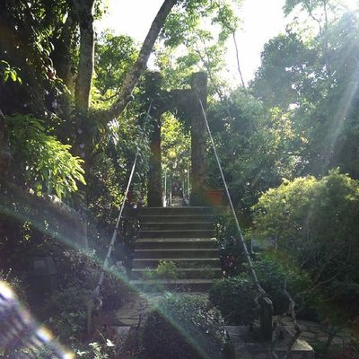 Beauty and mystery. Retreat Philippines Nature Architecture Archilovers
