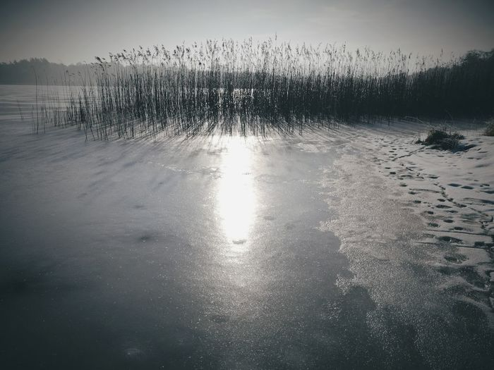 Borne Sulinowo Nature Outdoors No People Beauty In Nature Day Water Ice Lake First Eyeem Photo
